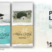 Olive Oli Label Design